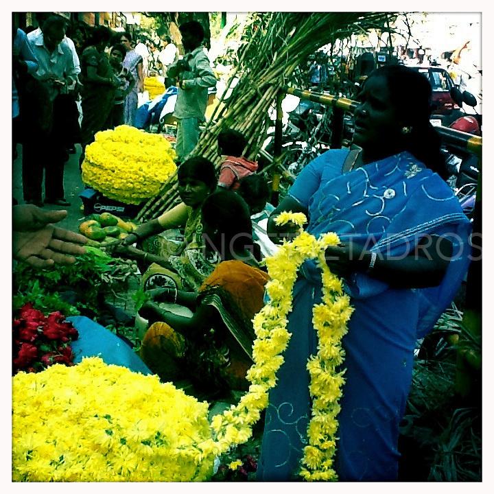 IPhone and IPad images from India in Goa,Karnataka,Kerala and Varani.<br /> India 2013<br /> &copy;Ingetje and Romani Tadros
