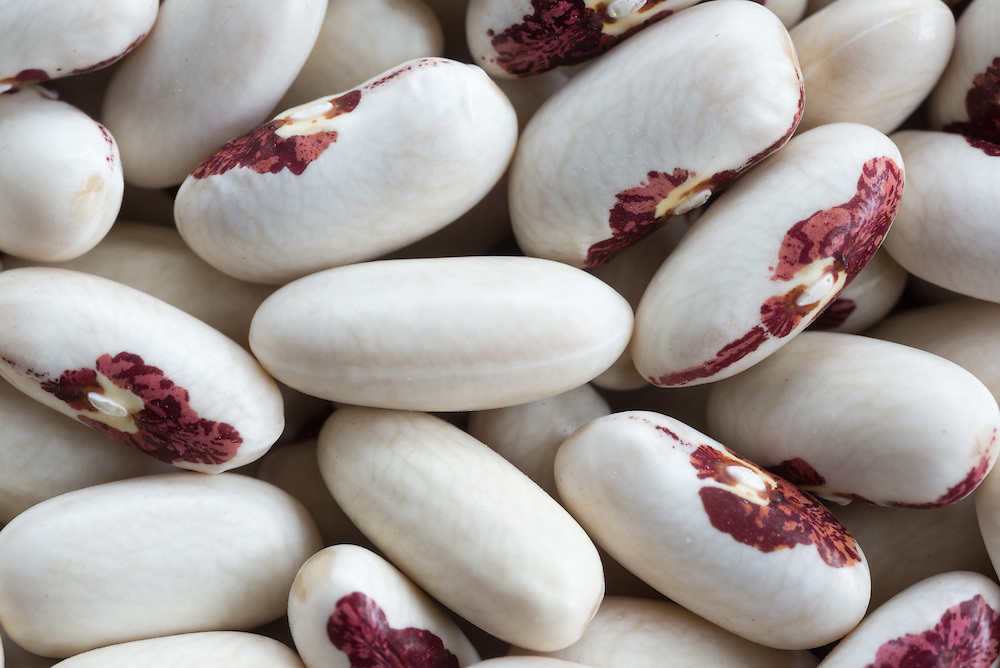 Dried Soldier beans.