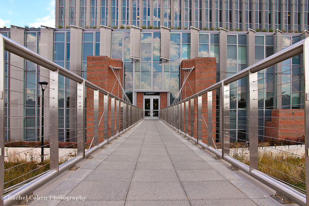 &quot;The Leading Lines&quot;<br />