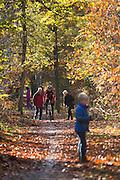 Bij Austerlitz passeert een wielrenner wandelaars die genieten van het mooie herfstweer.<br /> <br /> Near Austerlitz a cyclist passes walkers enjoying the beautiful autumn weather in the woods .