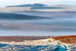 © Licensed to London News Pictures. 06/02/2020. Builth Wells, Powys, Wales, UK. A wintry landscape at sunrise on the Mynydd Epybt range near Builth Wells in Powys, Wales, UK. after temperatures dropped to around minus 5 C in Powys last night. Photo credit: Graham M. Lawrence/LNP