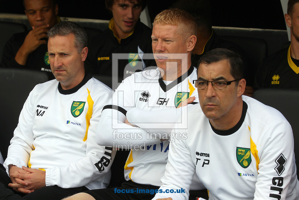 Norwich Manager Neil Adams, First Team Coach Gary Holt and Goalkeeping Coach Tony Parks before the Sky Bet Championship match at Craven Cottage, London<br /> Picture by Paul Chesterton/Focus Images Ltd +44 7904 640267<br /> 18/10/2014