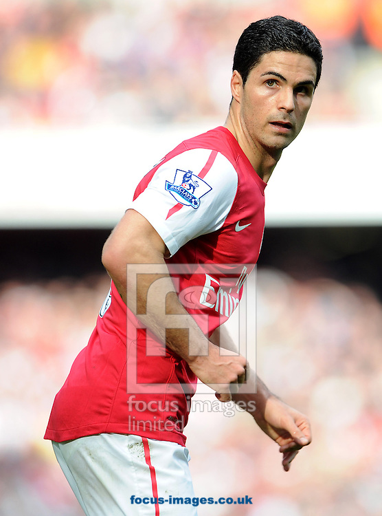 Picture by Andrew Timms/Focus Images Ltd. 07917 236526.26/02/12.Mikel Arteta of Arsenal during the Barclay Premier League match against Tottenham Hotspur at Emirates Stadium, London.