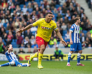 Brighton and Hove Albion v Watford 25/04/2015