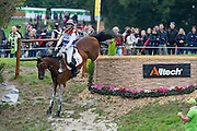 Merel Blom, (NED), Rumour Has It - Eventing Cross Country test - Alltech FEI World Equestrian Games™ 2014 - Normandy, France.<br /> © Hippo Foto Team - Leanjo de Koster<br /> 30/08/14