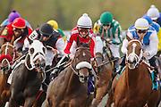Keeneland Fall Meet 2011