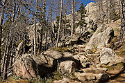 Stone steps along the trail from Sylvan Lake to Harney Peak, Custer State Park, South Dakota.
