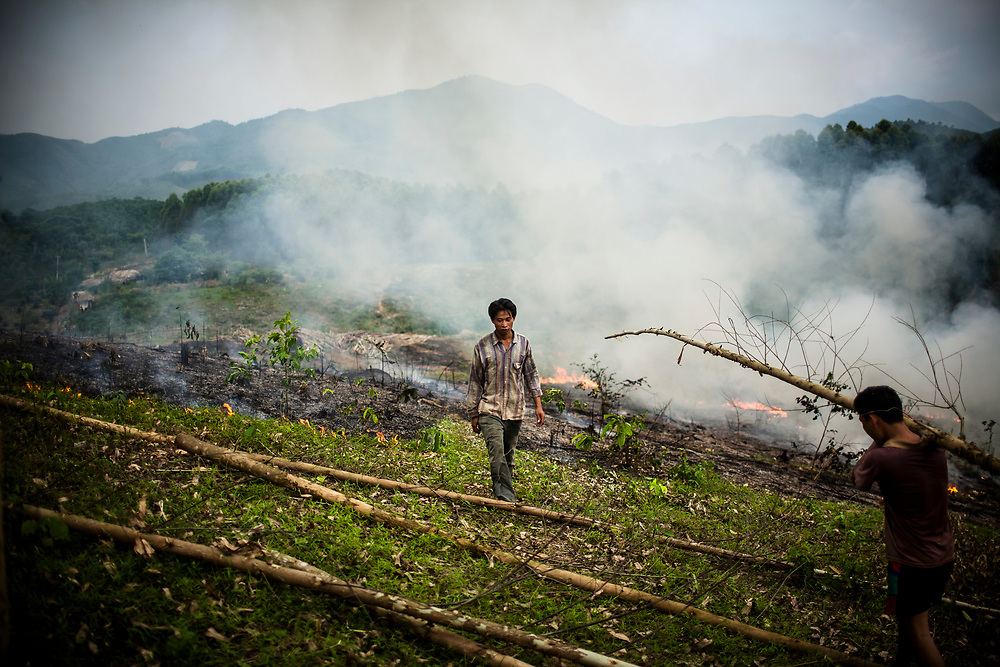 Workers cut down trees and make a clearing to plant new crops in Yen Bai Province in northern Vietnam.