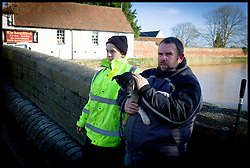 Burrowbridge, Somerset, United Kingdom.Sunday, 9th February 2014. A local man holds onto his dog as he looks out onto the flooded Somerset Levels. The levels have been flooded since the start of 2014, with people being forced to leave their homes. Picture by Andrew Parsons / i-Images