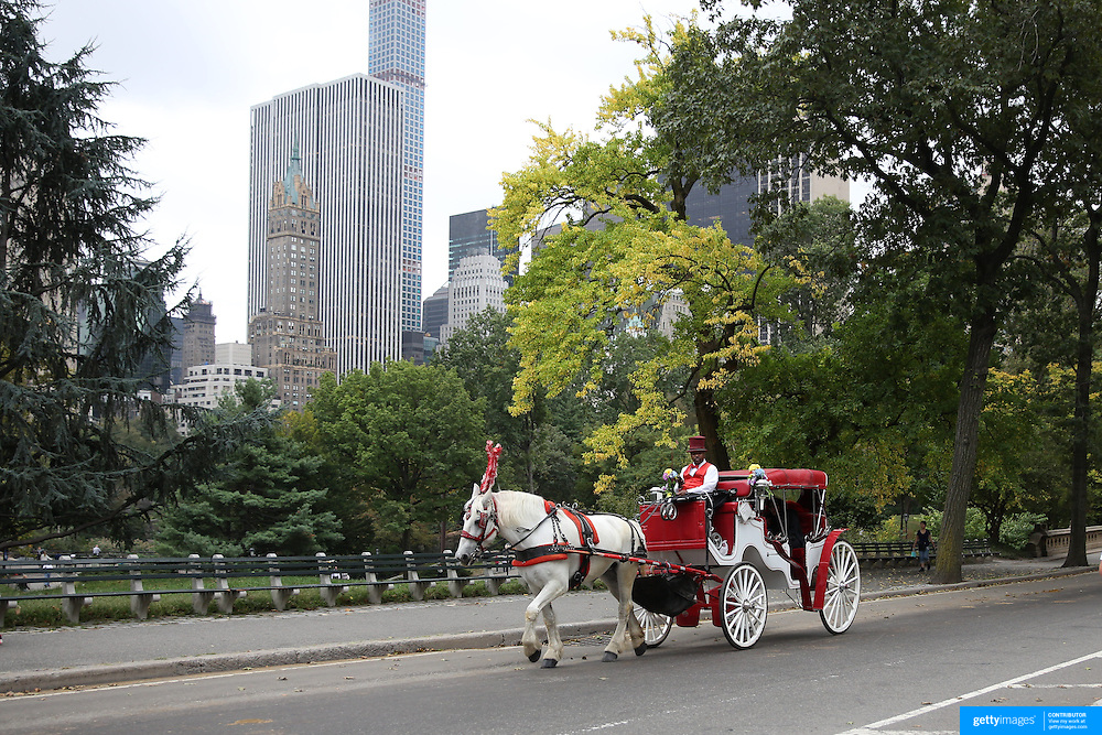 Horse-Drawn Carriages tour Central Park with sightseers during early fall. Horse-Drawn Carriages provide a wonderful way to experience the beauty of Central Park, Manhattan, New York. They can be found all year round lined up along Central Park South between 5th and 6th Avenues waiting for customers. Central Park, Manhattan, New York, USA. Photo Tim Clayton