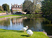 Village duck pond and historic house Urchfont, Wiltshire, England, UK