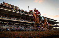 DEL MAR, CA - NOVEMBER 04:  Gun Runner #5 with Florent Geroux up wins the Breeders' Cup Classicat Del Mar Thoroughbred Club on November 04, 2017 in Del Mar, California. (Photo by Alex Evers/Eclipse Sportswire/Breeders Cup)