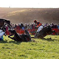 R.P McNamara on Thomond Pride and B. T O' Connell on Last Time D'Albain take a tumble in the 3rd at the annual Bellhabour point to point on Sunday.<br /> Photograph by Yvonne Vaughan