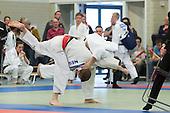 Friese Judo Kampioenschappen 2015