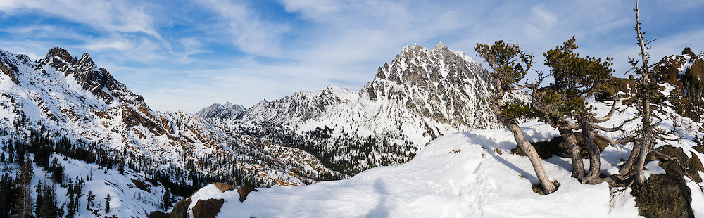 The prominent peak of Mount Stuart (9415 feet / 2870 meters) rises beyond twisted trees on snowy Ingalls Pass in early November. It is the second highest non-volcanic peak in Washington state and tenth-highest overall. It is located in the central part of the Washington Cascades, south of Stevens Pass and east of Snoqualmie Pass in Alpine Lakes Wilderness, USA. Panorama stitched from 4 images.