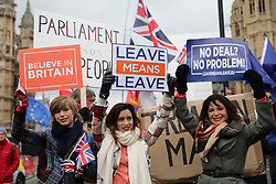 © Licensed to London News Pictures. 29/01/2019. London, UK. Pro-Brexit protesters outside Parliament as Brexit negotiations continue. MPs will vote on a series of amendments this evening. Photo credit: Rob Pinney/LNP