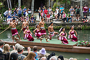 "Samoan dancers in the Canoe Pageant, ""Rainbows of Paradise."" The Polynesian Cultural Center (PCC) is a major theme park and living museum, in Laie on the northeast coast (Windward Side) of the island of Oahu, Hawaii, USA. The PCC first opened in 1963 as a way for students at the adjacent Church College of Hawaii (now Brigham Young University Hawaii) to earn money for their education and as a means to preserve and portray the cultures of the people of Polynesia. Performers demonstrate Polynesian arts and crafts within simulated tropical villages, covering Hawaii, Aotearoa (New Zealand), Fiji, Samoa, Tahiti, Tonga and the Marquesas Islands. The Rapa Nui (Easter Island) exhibit features seven hand-carved moai (stone statues). The PCC is run by the Church of Jesus Christ of Latter-day Saints (LDS Church).For this photo's licensing options, please inquire."