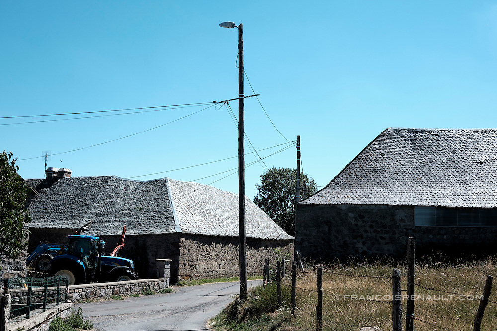 Aubrac, Cantal, Aubergne, France.