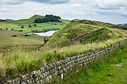 Hadrian's Wall (Latin: Vallum Aelium) at Steel Rigg, England, United Kingdom, Europe. As the Roman Empire's largest artifact, Hadrian's Wall runs 117.5 kilometres (73.0 miles) across northern England, from the banks of River Tyne near the North Sea to Solway Firth on the Irish Sea. Much of the wall still stands and can be walked along the adjoining Hadrian's Wall Path. Within the Roman province of Britannia, it defended the northwest frontier of the Roman Empire for nearly 300 years. It was built by the Roman army on the orders of the emperor Hadrian in the 6 years following his visit to Britain in AD 122. From north side to south, the wall comprised a ditch, stone wall, military way and vallum (another ditch with adjoining mounds). The wall featured milecastles with two turrets in between and a fort about every five Roman miles. Hadrian's Wall is honored as a World Heritage Site. The wall lies entirely within England, and is unrelated to the Scottish border, which lies north of the wall at distances varying from 1-109 kilometers (0.6-68 miles) away.