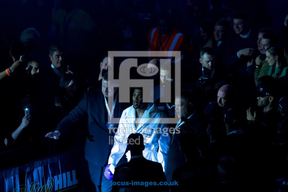 Anthony Joshua enters the arena during their IBF Heavyweight World Championship bout at the O2 Arena, London<br /> Picture by Alan Stanford/Focus Images Ltd +44 7915 056117<br /> 09/04/2016