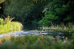 UK ENGLAND WEST BERKSHIRE HUNGERFORD 26JUN08 - The river Kennet flows through Hungerford in West Berkshire, western England...jre/Photo by Jiri Rezac / WWF UK..© Jiri Rezac 2008..Contact: +44 (0) 7050 110 417.Mobile:  +44 (0) 7801 337 683.Office:  +44 (0) 20 8968 9635..Email:   jiri@jirirezac.com.Web:     www.jirirezac.com..© All images Jiri Rezac 2008 - All rights reserved.