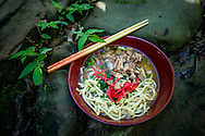 Okinawa soba in the Iriomote rainforest.  Iriomote, Okinawa, Japan.  Okinawa soba is different from mainland soba because it is not made with buckwheat but wheat.