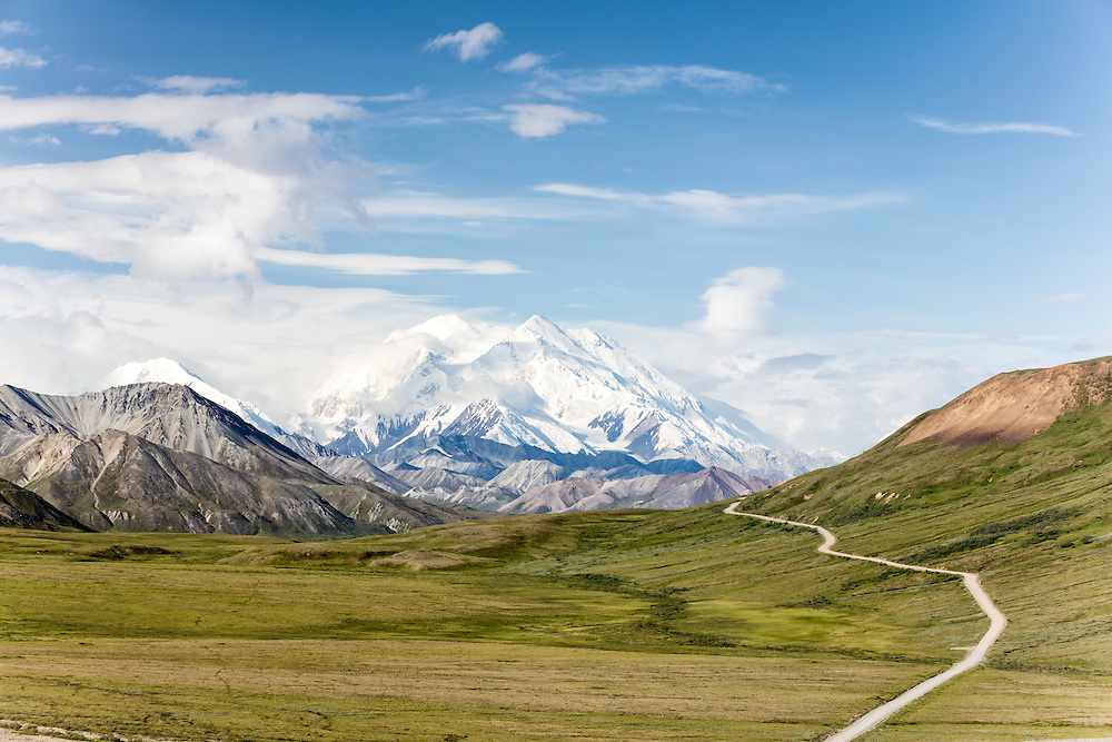 Denali (Mt. McKinley) and Thorofare Pass  from Stony Hill in Denali National Park in Southcentral Alaska. Summer. Morning.