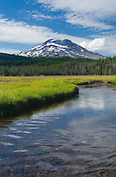 South Sister from Soda Creek Meadows, Deshutes National Forest, Oregon