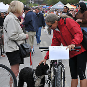 Bicycle seller pats friend's Portuguese Water Dog at the 2011 Fall Bicycle Swap Meet, Tucson, Arizona. Bike-tography by Martha Retallick.