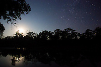 View of the Karnali River and riverine forest at night in Bardia National Park, Nepal