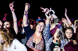Excited festivalgoers enjoying themselves at the Brownstock Festival in Essex.