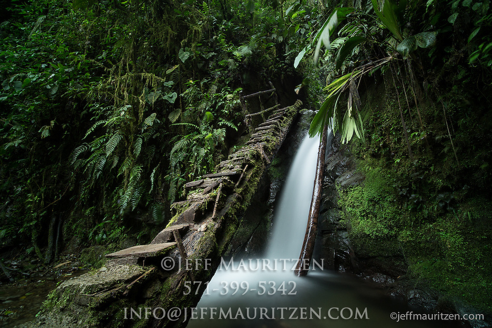 Steps lead up and over a waterfall in the cloud forest of Mindo, Ecuador.