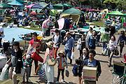 crowded park with picnicking crowd Japan Yokosuka