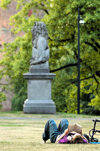 Nederland, Nijmegen, 22-6-2017Parken in Nijmegen. In het Kronenburgerpark brengen mensen deze zwoele avond door. Bijvoorbeeld met het lezen van een boek.Foto: Flip Franssen