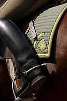 08 APR 2002, BERLIN/GERMANY:<br /> Die Satteldecke des Pferdes der BGS Reiterstaffel traegt noch die Aufnaeher von Polizei UND Bundesgrenzschutz, vor der offiziellen Uebergabe der Berliner Polizei-Reiterstaffel an den Bundesgrenzschutz, Bundesgernzschutzamt Berlin - Reiterstaffel, ehem. Polizeireiterwache Grunewald<br /> IMAGE: 20020408-01-005<br /> KEYWORDS: Reiter, Pferd, Pferde, Grenzschutz, BGS,  Reiterstaffel, Horse, Übergabe, Wappen, Zeichen, Sign