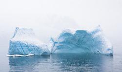 Icebergs in snow in Antarctica