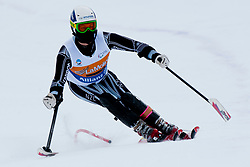 HALL Adam, NZL, Super Combined, 2013 IPC Alpine Skiing World Championships, La Molina, Spain