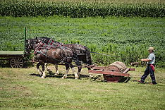 THRESHING DAY