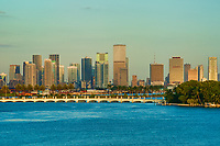 Miami in the Morning