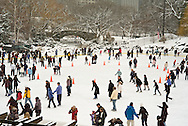 Snow blizzard in Central Park. Manhattan. New York City.Trump Ice Skate Ring