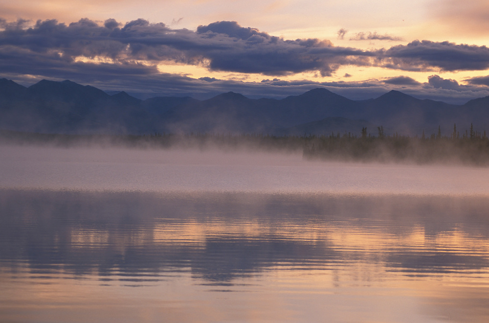 Morning Mist near Haines Junction, Yukon, Alaska, USA