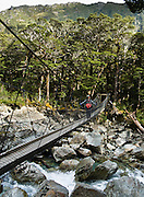 A hiker (tramper) crosses a swing bridge on the Routeburn Track, in Mount Aspiring National Park, South Island, New Zealand. In 1990, UNESCO honored Te Wahipounamu - South West New Zealand as a World Heritage Area.