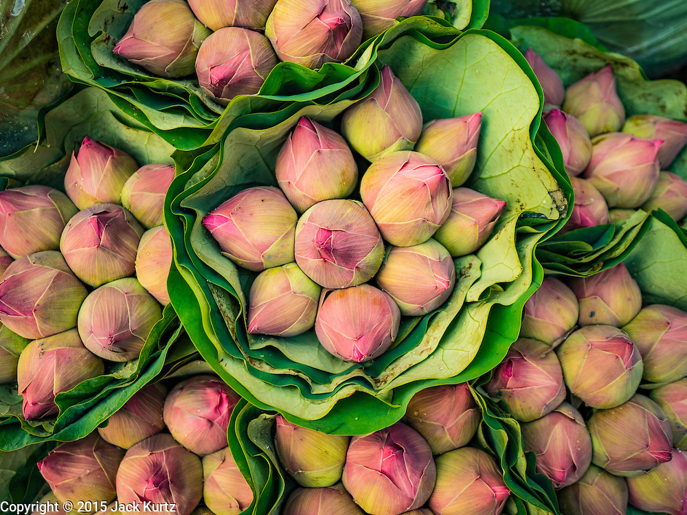 """21 DECEMBER 2015 - BANGKOK, THAILAND: Lotus buds for sale from a street side stand in Pak Khlong Talat, also called the Flower Market. The market has been a Bangkok landmark for more than 50 years and is the largest wholesale flower market in Bangkok. A recent renovation resulted in many stalls being closed to make room for chain restaurants to attract tourists. Now Bangkok city officials are threatening to evict sidewalk vendors who line the outside of the market. Evicting the sidewalk vendors is a part of a citywide effort to """"clean up"""" Bangkok.       PHOTO BY JACK KURTZ"""