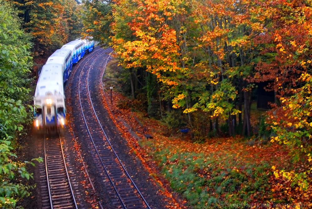 Seattle Sounder Commuter Train, Magnolia