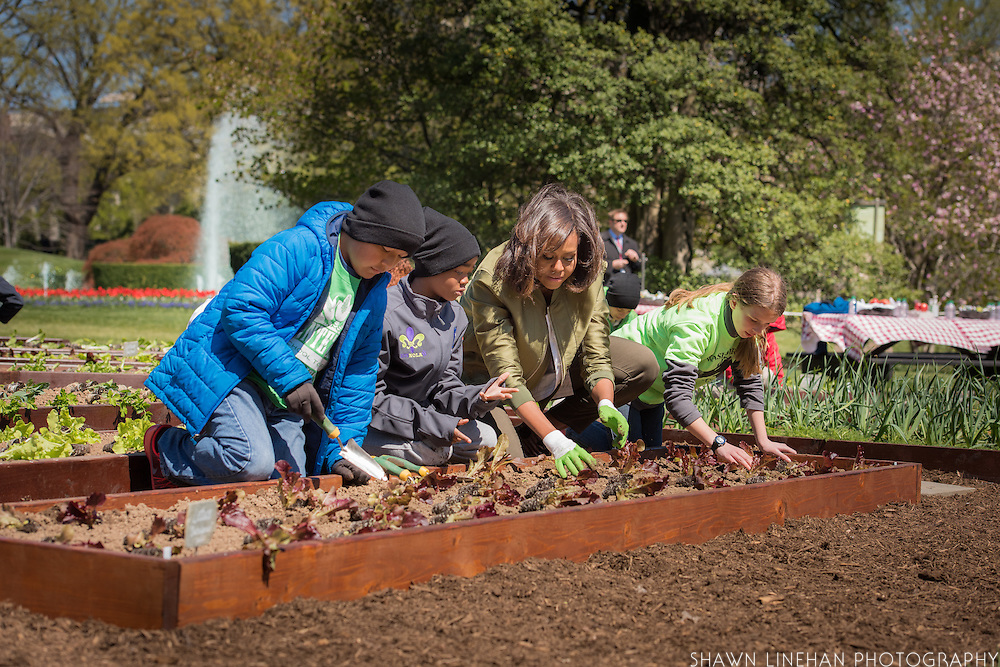 """Three children from around the country plant NASA """"Outredgeous"""" lettuce with the First Lady Michelle Obama at the White House Kitchen Garden. From left to right:<br /> Miles Frost 10 years old, Kemper Elementary, Cortez, CO;<br /> Malik Robins, 11 years old, Arthur Ashe Charter School, NOLA;<br /> Erin Hinson, 10 years old, Washburn, WI"""