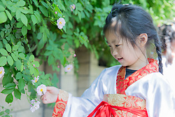 April 28, 2018 - Rugao, Rugao, China - Rugao, CHINA-28th April 2018: Kids wearing traditional Chinese clothes enjoy blooming roses in Rugao, east China's Jiangsu Province. (Credit Image: © SIPA Asia via ZUMA Wire)