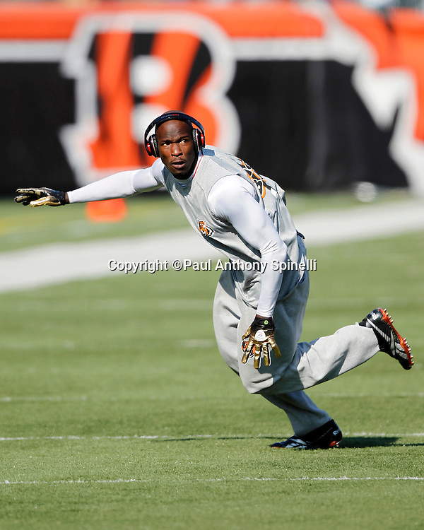 Cincinnati Bengals wide receiver Chad Ochocinco (85) goes out for a pregame pass during the NFL week 8 football game against the Miami Dolphins on Sunday, October 31, 2010 in Cincinnati, Ohio. The Dolphins won the game 22-14. (©Paul Anthony Spinelli)