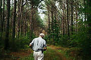 "MERIDIAN, MS – AUGUST 3, 2018: Clayton George, 57, walks under a canopy of mature Loblolly pine that is ready for final harvest. As a resident of Tennessee, George makes the four hour drive south every two weeks to check on his family's 400 acre tract, and visit his father who still lives there.<br /> <br /> In 1987, George and a friend walked in rows planting the family's first batch of Loblolly pine, where soybeans, wheat and cattle once covered the family's 400 acres.  The shift to timber was largely prompted by the Conservation Reserve Program, a popular new farm subsidy in the 1980s that encouraged farmers to reforest depleted land by paying them for every acre of trees planted. Since 1926, the George family had made a good living from their eastern Mississippi farm, but the decline of soybeans and other crops eventually led George to consider growing trees instead – a crop that landowners throughout the south believed would bring in easy money. Thirty years later, however, the same landowners are now facing unexpected financial hardship. Stumpage prices have been on a steady decline – as much as 45% since 2007 – and landowners are rethinking timber as a worthwhile investment. """"We figured we''d plant trees and come back and harvest it in 30 years, and in the meantime go into town to make a living doing something else,"" George said. As co-owner of the family acreage with three other family members, George always considered himself the most nostalgic Now, as he patiently awaits for right time to harvest a 30 year investment, even he considers the future of the land uncertain. CREDIT: Bob Miller for The Wall Street Journal<br /> TIMBER_AL"