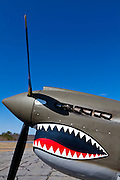 Prop, exhaust, and nose art of a P-40 War Hawk.  Fully restored to flying condition, this aircraft is owned and operated by the Liberty Foundation.