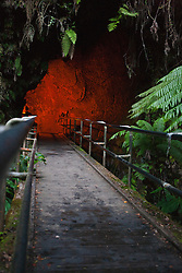 Entrance to lava tube, Hawaii Volcanoes National Park,The Big Island, Hawaii, United States of America